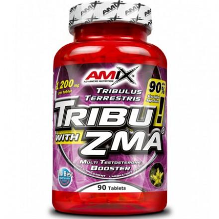 TRIBU-ZMA 2000