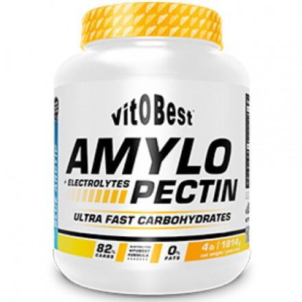 Amylopectin + Electrolytes